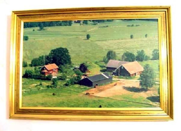 Vista aérea do centro do Baependi Stud. Ao fundo, parte de alguns dos grandes piquetes, formando 25 hectares de pastos muito férteis