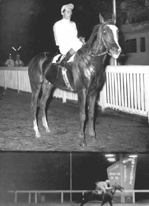 SIR TOBY winning very easy in São Vicente, important Jockey Club in the coast of São Paulo, specially in that golden days. The jockey was Augusto Cavalcanti and the year was 1958