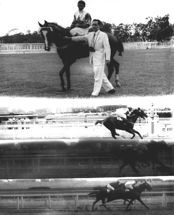 The father of the actual owner of the Baependi Stud, Luiz Eduardo Lages, the prestigious admiral Mario Luiz de Lima Lages, receiving SIR TOBY again, in one more of his many impressive victories, after to win very easy another race, in the more important Brazilian racetrack, the Hipódromo da Gávea Racetrack), in Rio de Janeiro, Brazil. The date was 21 February 1957